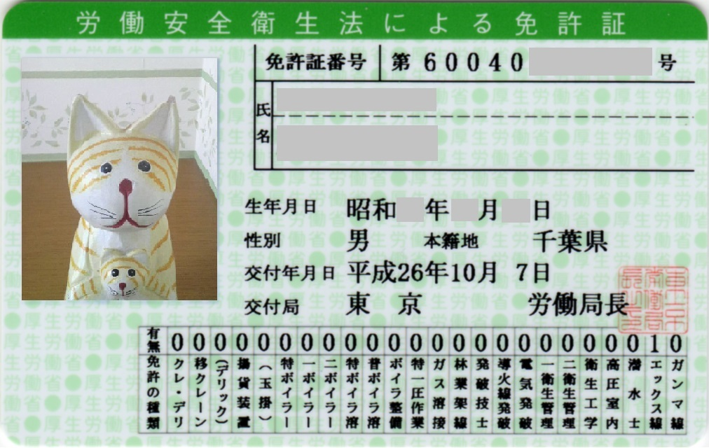 作業 試験 エックス線 日 者 主任